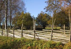Trägärdesgård